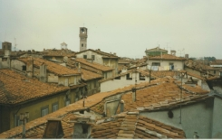 lucca 86025a90