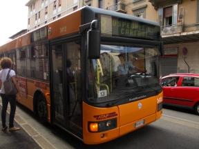 DSCN5845